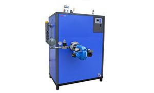 燃油(气)蒸汽发生器100KG-劳士特