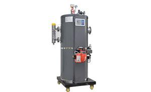 燃油(气)蒸汽发生器100KG LWS0.1-0.7-Y(Q)