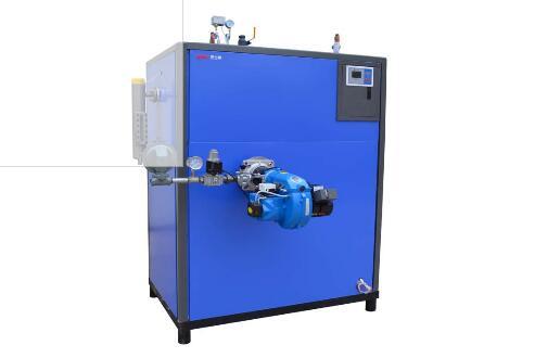 燃油(气)蒸汽发生器600KG