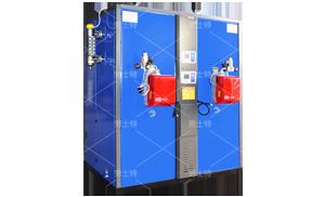 600KG燃油(气)蒸汽发生器